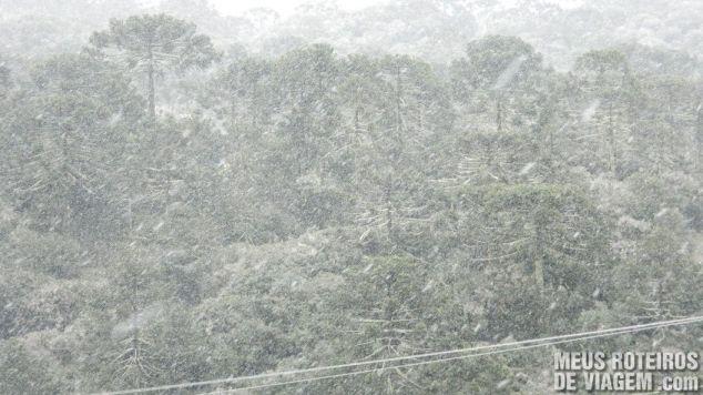 Neve entre Urubici e São Joaquim (1475m de altitude)