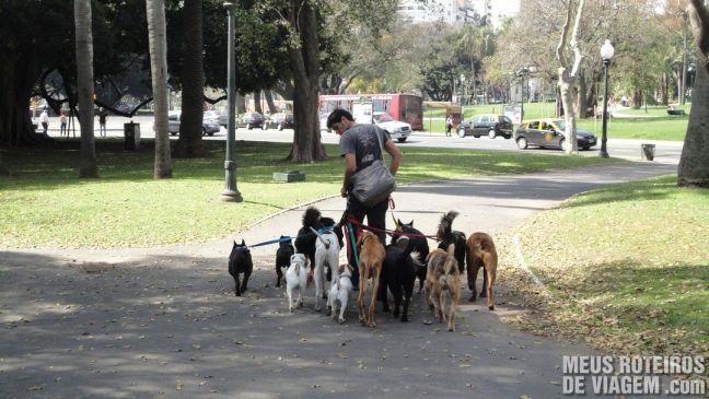 Passeador de cães na Recoleta