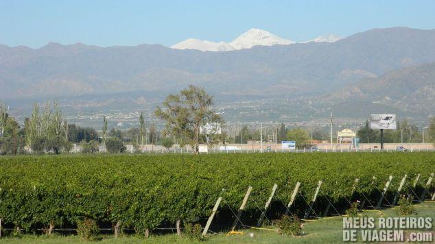 Vinhedo e a vista para as montanhas no Aeroporto de Mendoza