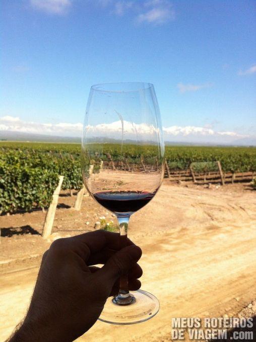 Degustação na vinícola Pulenta Estate - Mendoza, Argentina