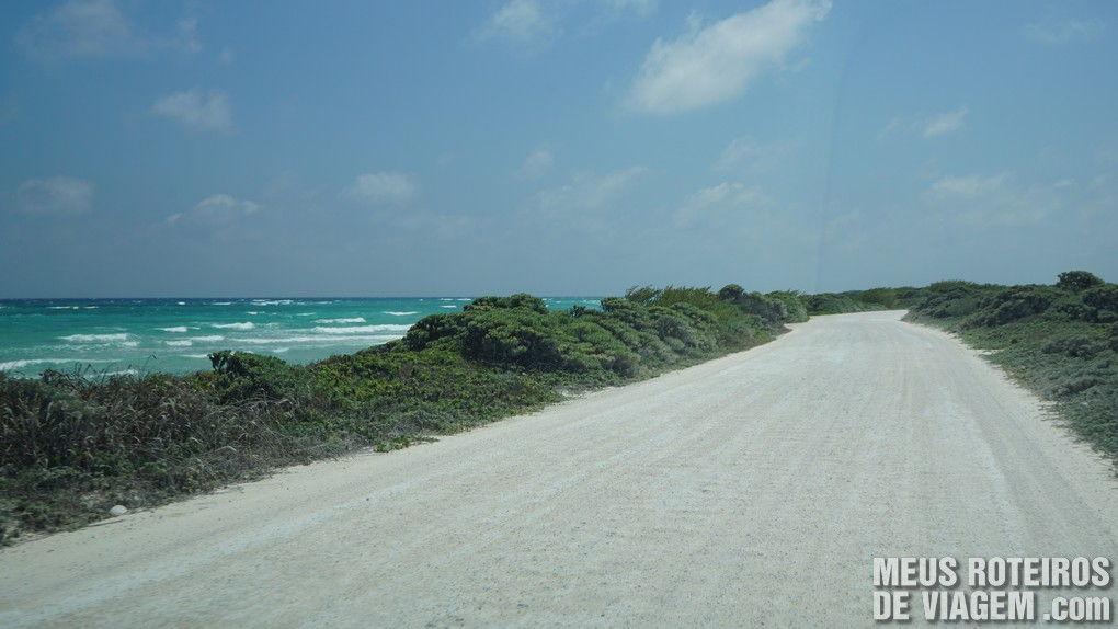 Estrada de chão no Parque Punta Sur - Cozumel, México