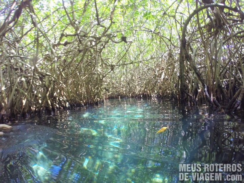 Rio subterâneo no Parque Xcaret - Riviera Maya, México