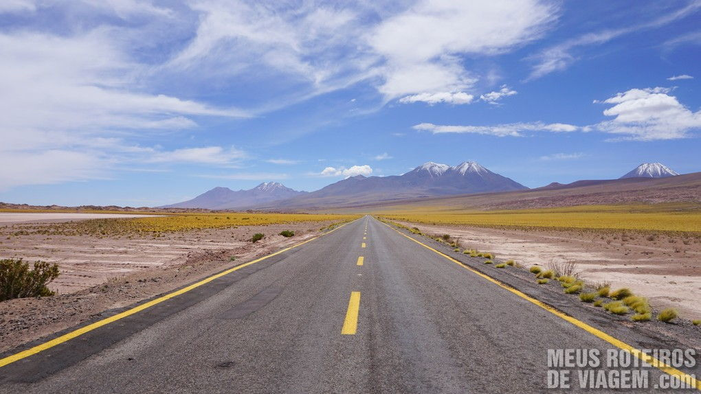 Parada na estrada no Tour das Lagoas Altiplânicas - Agência Araya Atacama