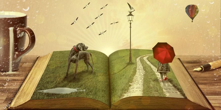 Boeken: een wereld vol fantasie