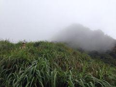Eva in tall Asian grass
