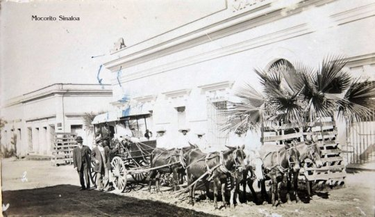 Image result for fotos antiguas de Mocorito