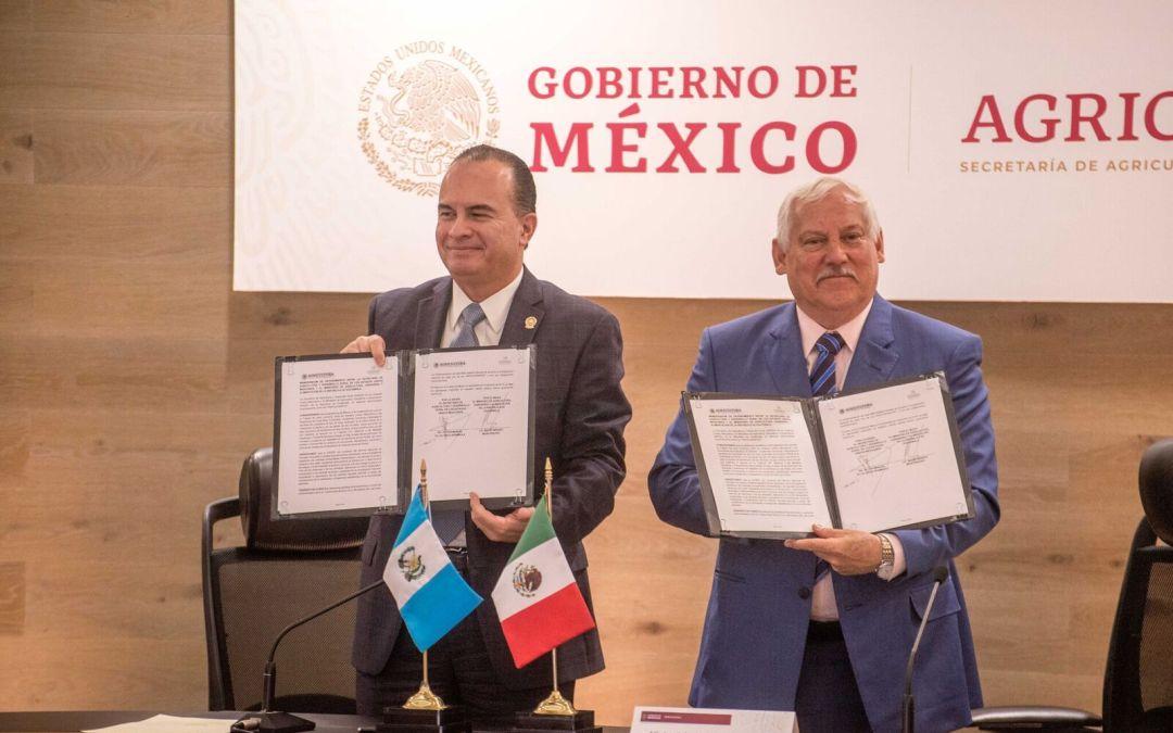 Acuerdan México-Guatemala regular introdución de ganado