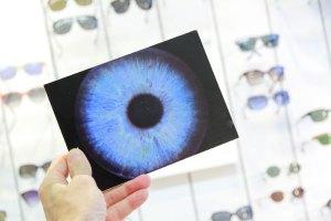 Foto-Iris-OPTIMUM