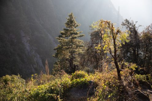 Nepal trekking (92)