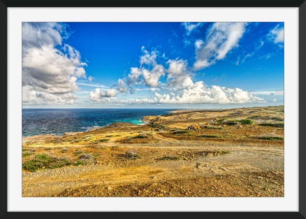 Aruba art prints