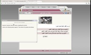 Defense Language Institute - Arabic