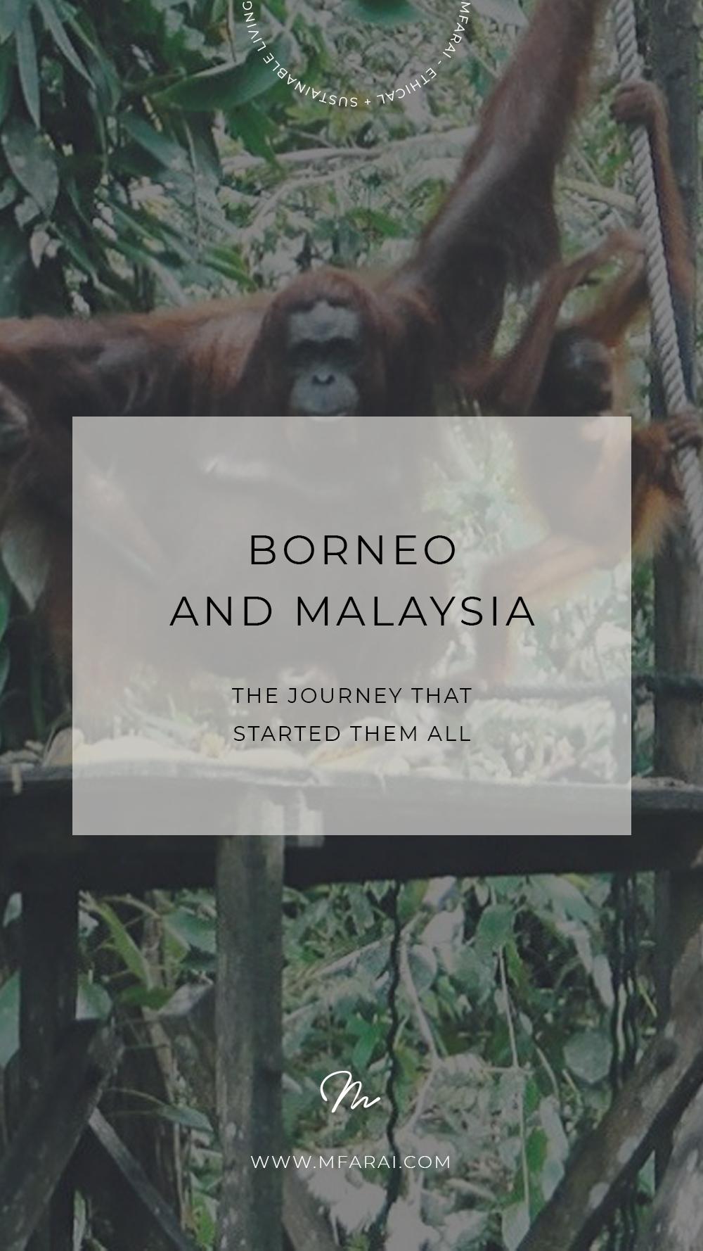 Borneo and Malaysia Sustainable Travel