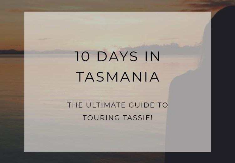 Eco Tasmania Travel Guide