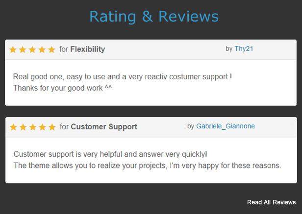 MF - Premium WordPress Theme - Review