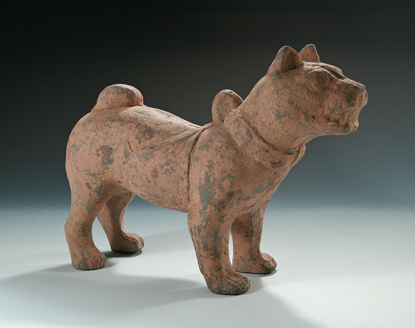 HAN DYNASTY POTTERY STANDING DOG China 206 BC 220 A