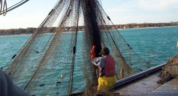 Michigan Commercial Fishing