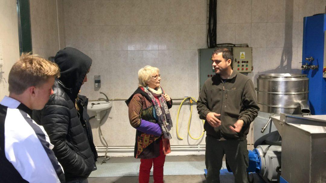 Moulin huile olives San Fruitos de Bages (7)