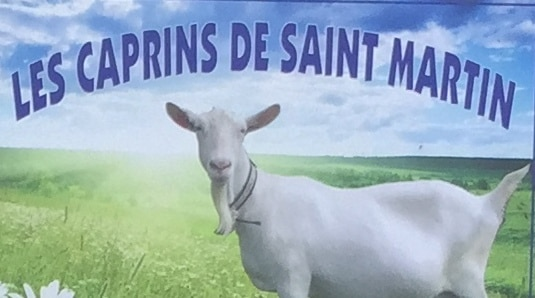 Chèvres visite GAEC Les Caprins Novembre 2017 4è (3)