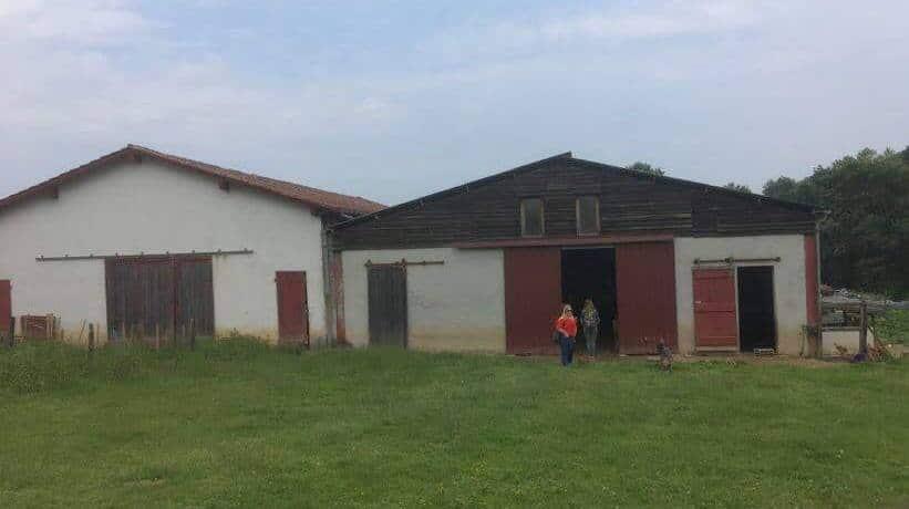 exploitation à Arrayoa chez Ibarburu Pierre (2)