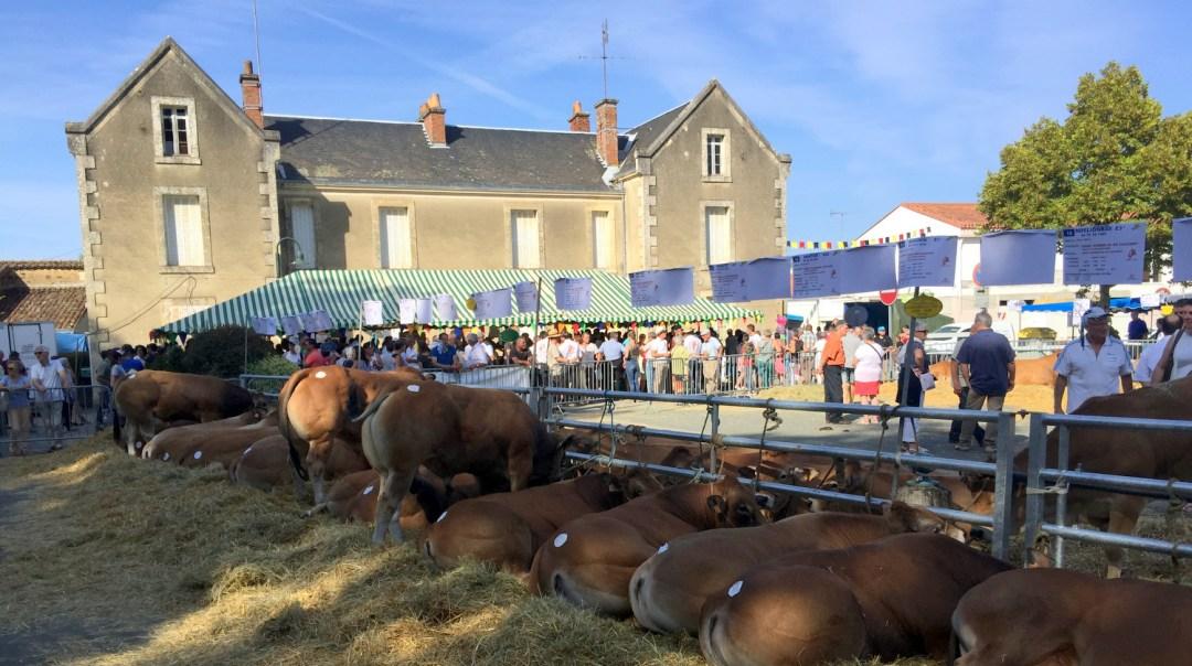 Septembre Fête et foire Vendée (32)
