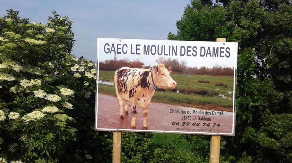 Visite GAEC Le Moulin Des Dames TA1 Octobre 2018 (11)