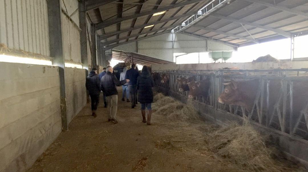TA agriculture biologique GAEC «La Grange» (4)
