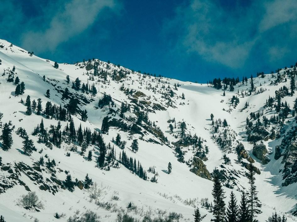 SnowbirdCPix-MGallegly--3078