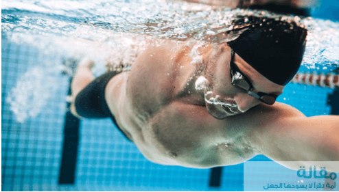 خطوات تعليمية لسباحة الدولفين وكيف نطبق التمارين