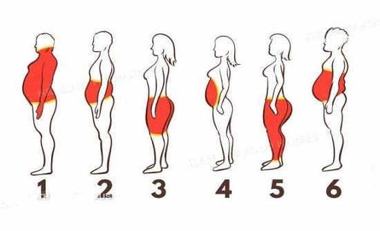 أنواع دهون الجسم وأيها اكثر ضرر