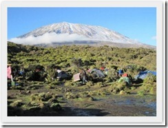Kilimanjaro (26)