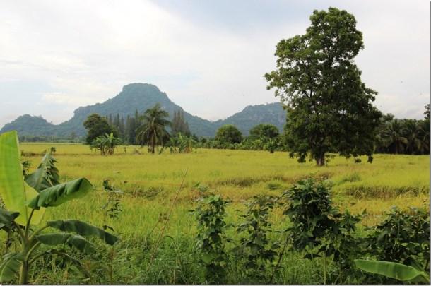 2012_09_15 Thailand Hua Hin Countryside (5)