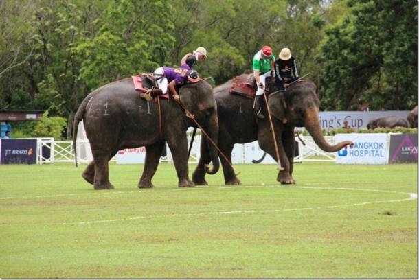 2012_09_06 Thailand Hua Hin Elephant Polo (13)
