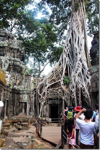 2012_12_27 Cambodia Angkor Te Prohm (2)