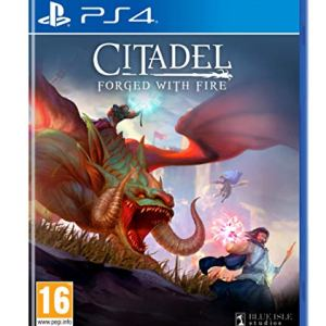 PS4: Citadel: Forged with Fire