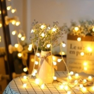 5m Twinkle Ball Light Rope, 50 LED Decoration Light, AC 220V, Size: Small(Warm White)