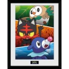 GBeye Collector Print - Pokemon Alola Partners