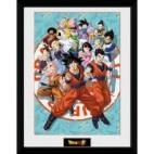 GBeye Collector Print - Dragon Ball Super Universe Group 30x40cm