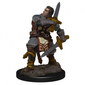 D&D Icons of the Realms Premium Figures: Human Male Paladin (6 Units)