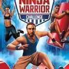 Switch: American Ninja Warrior Challenge