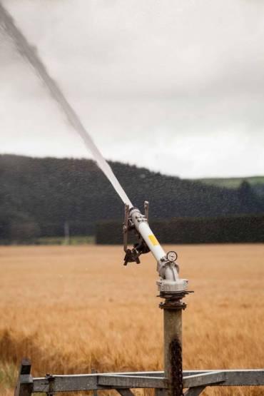 mgi-irrigation-52