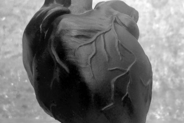 Heart1-foto1-MarcelloGanzerli-ArtigianoDigitale-mgpix
