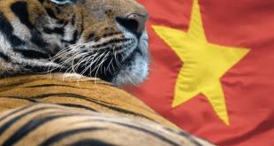 ازمة النمور الاسيوية