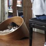 Covo Dog Lounge Miacara