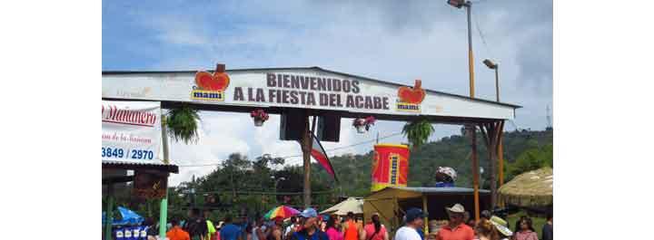 Fiesta Del Acabe Del Caf En Maricao 2017