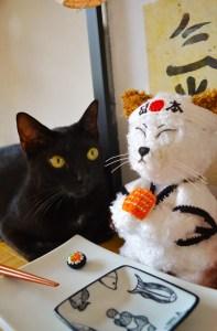 "Yoko: ""Pleease, gimme that sushi!"""