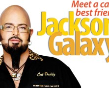 Meet Jackson Galaxy discussing and signing Cat Daddy: What the World's Most Incorrigible Cat Taught Me about Life, Love and Coming Clean