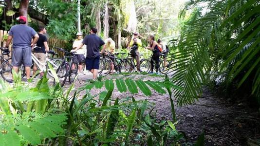 bike tours miami, biking miami, MiamiCurated, miami biking, miami bike tours, miami bike rentals, bike rentals miami, MiamiCurated