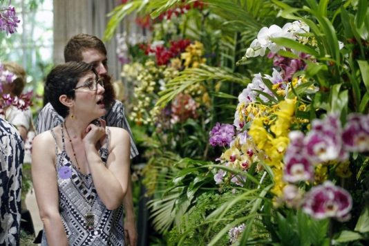 things to do Miami MiamiCurated, 16th annual international orchid festival