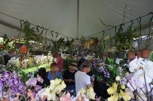 spring garden festival Miami, plant tour Miami, Miami events, garden festivals Miami