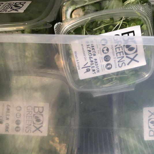 farmers markets in miami selling greens, MiamiCurated